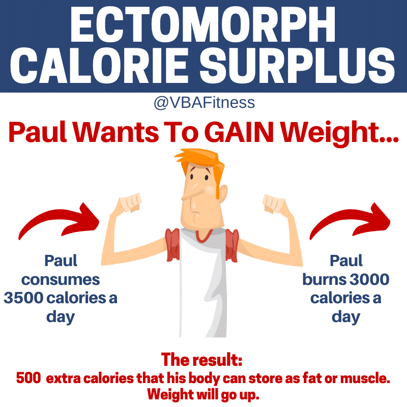 Ectomorph Body type needs to be in a calorie surplus