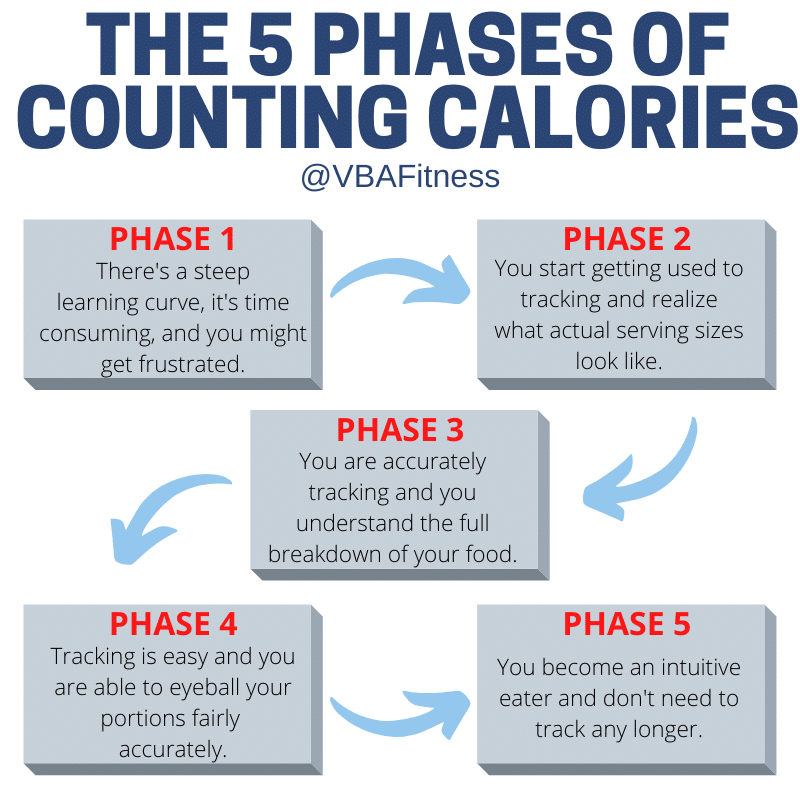 The 5 phases of macros for weight loss