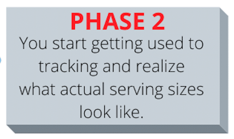 Phase 2 of calorie counting For Weight Loss